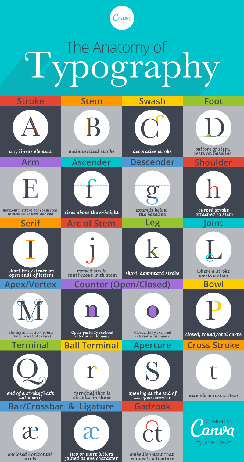 typography terms infographic